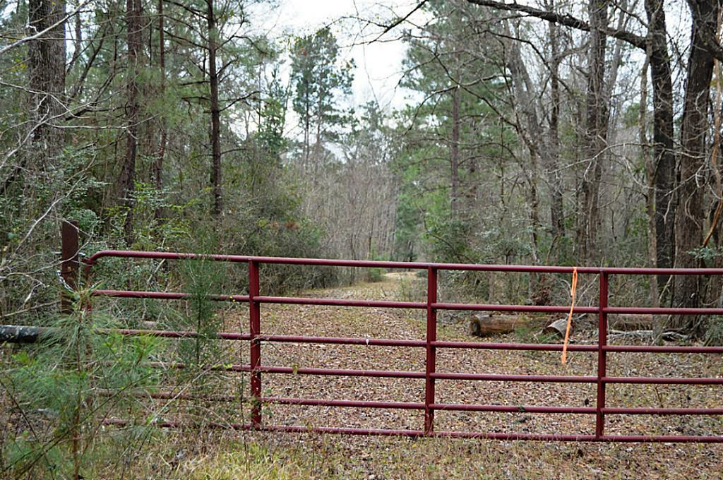 Located in Piney Woods of East Texas, this parcel is approx. 210-acre tract. It is a perfect secluded place for a home, ranch, recreational or corporate retreat. The property is a mix of hardwoods, native oak trees, and soaring pine trees. Located North of HWY 150 and South of FM 945, the parcel is 10 minutes to the historical town of Coldspring, 70 miles North of Houston. The internal road down the center helps to navigate to the outer limits. Electrical power is available.  Perfect opportunity for current or future development.