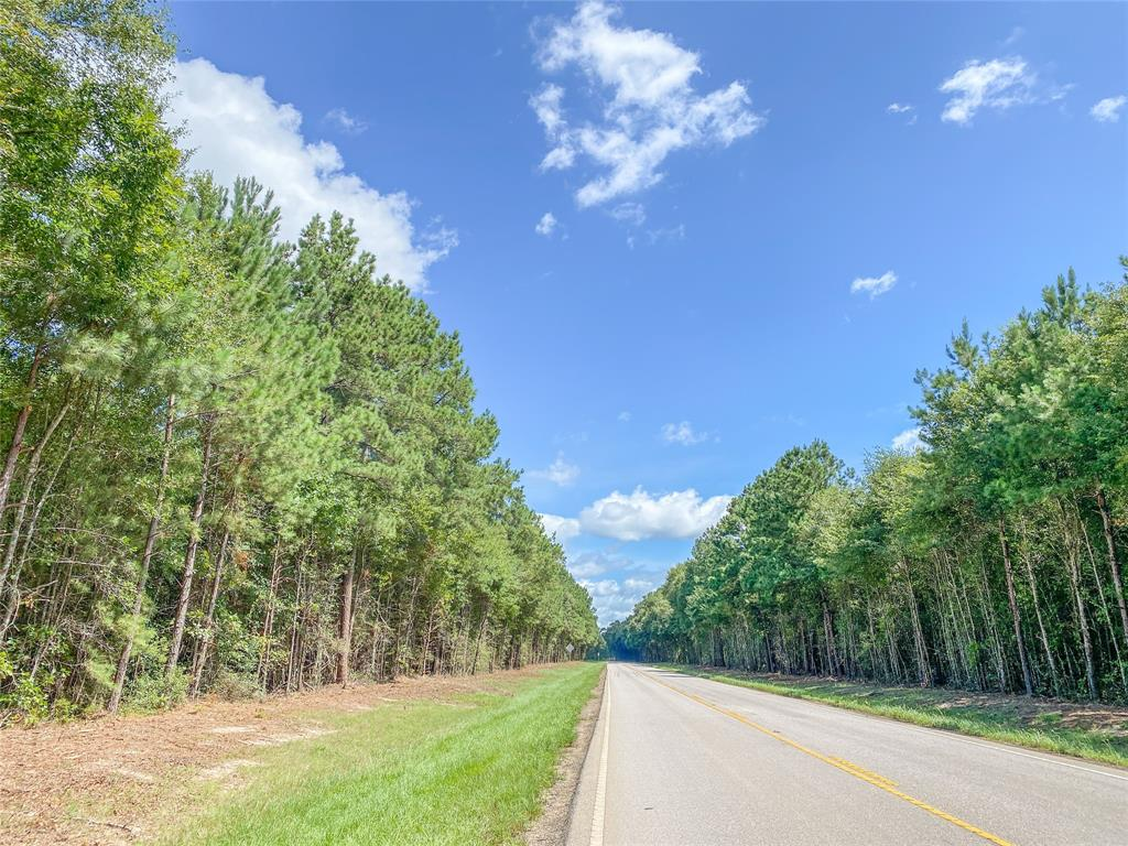 2.91 acres just North of Cleveland, South of Shepherd, Tx. Easy access to US-59 corridor. Country living atmosphere, but close to necessary amenities. Raw and untouched, ready to shape to your desire!