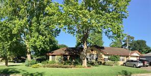 417 Avenue Of Oaks Street, Houston, TX 77009
