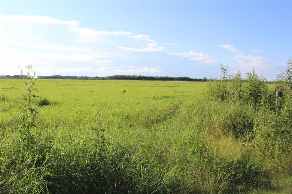 10.1 acres. Mobiles OK. There is a pond at the front of this tract. Former pasture land. Survey in attachments. Well and power pole. Only 75 miles from Houston.