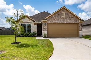 10002 Chimney Swift Lane, Conroe, TX 77385