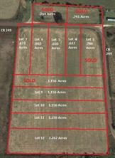 TBD Lot 1 CR 249, Oakwood, TX, 75855