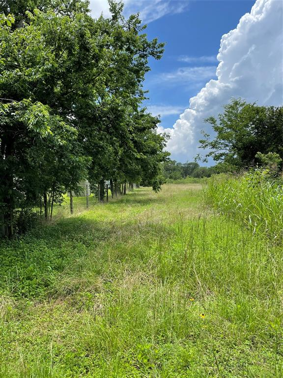 Lots of potential with this property. Not too far off the beaten path and minutes from College Station/Kyle Field and Lake Somerville you will find this one acre unrestricted tract ready for your home or weekend get away. The old home has given way to time and needs to be removed. Nice trees and lots of wildlife. Grass is tall in some areas so dress appropriately. Mobile Homes/travel trailers allowed. Show anytime and call with any questions.