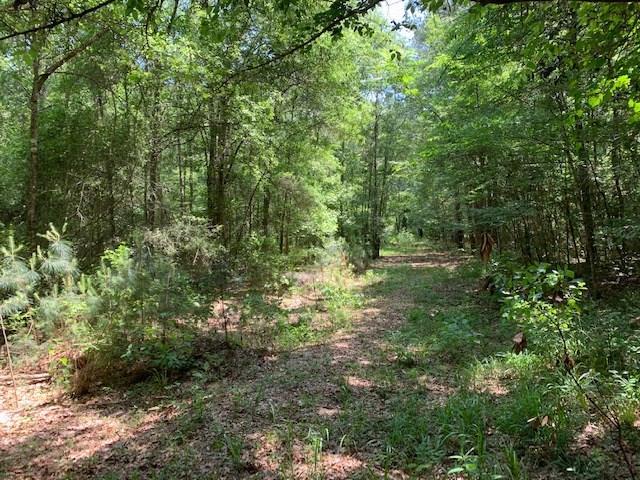 00 ARANDA Lane, Cleveland, Texas 77328, ,Country Homes/acreage,For Sale,ARANDA,11207723