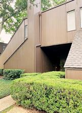 123 Litchfield Lane #250, Houston, TX 77024