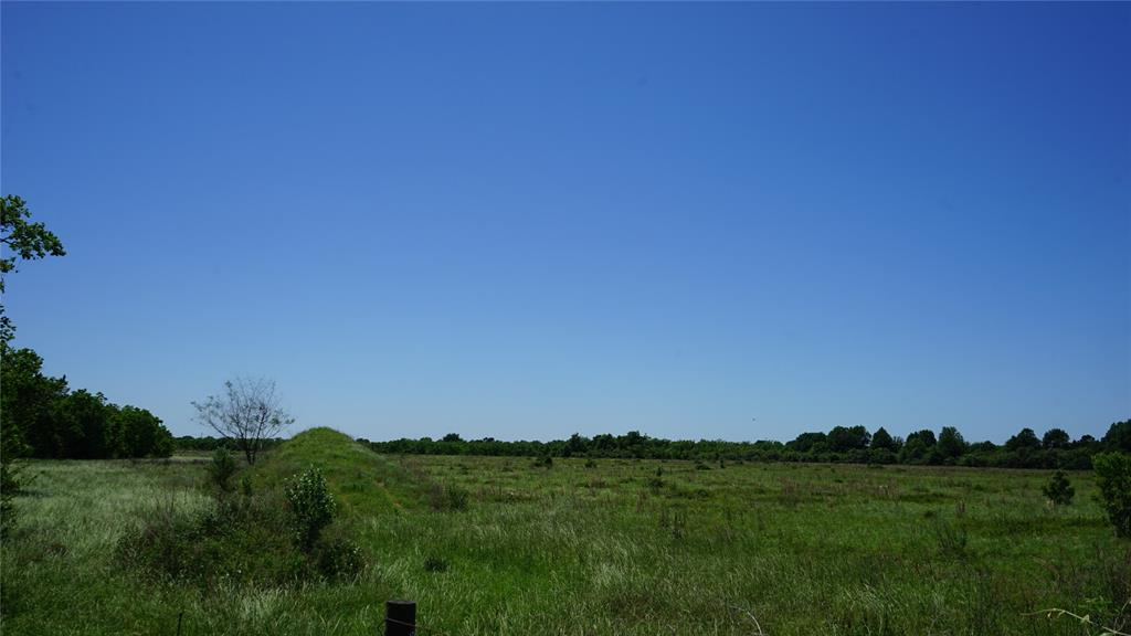 60 acres of unrestricted land. Great opportunity for Clay