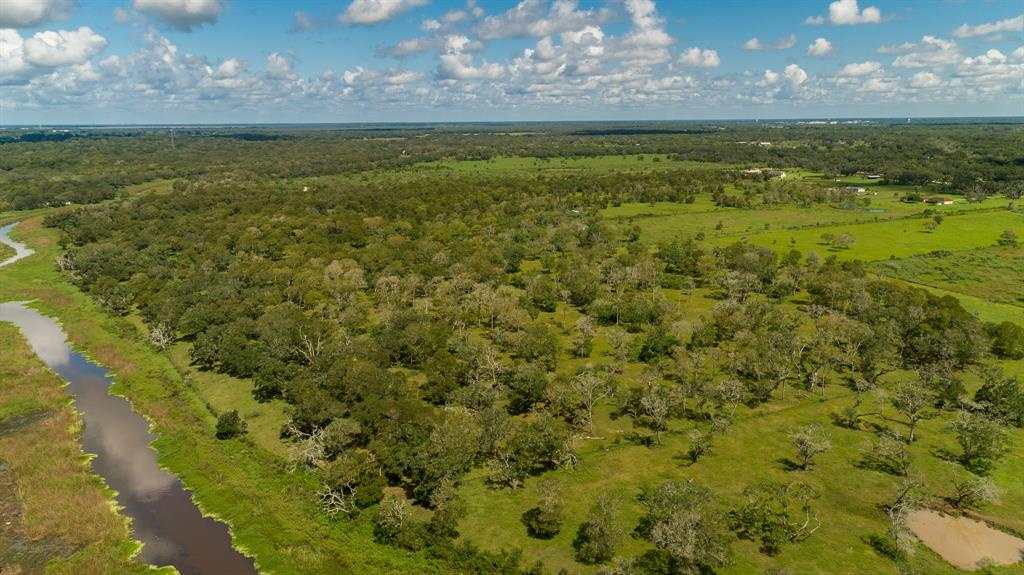 Beautiful 10 acres on Jones Creek located in Freeport. This property is fenced on 3 sides, no fence in between Lot 12 & 14. This property has the Ag exemption, cattle chutes and a corral.  There are 10 adjoining acres to the left that is available. Gorgeous live oak tree clusters around the property to provide shade for all your livestock. Bring your cows, pigs and horses and make this your new home.