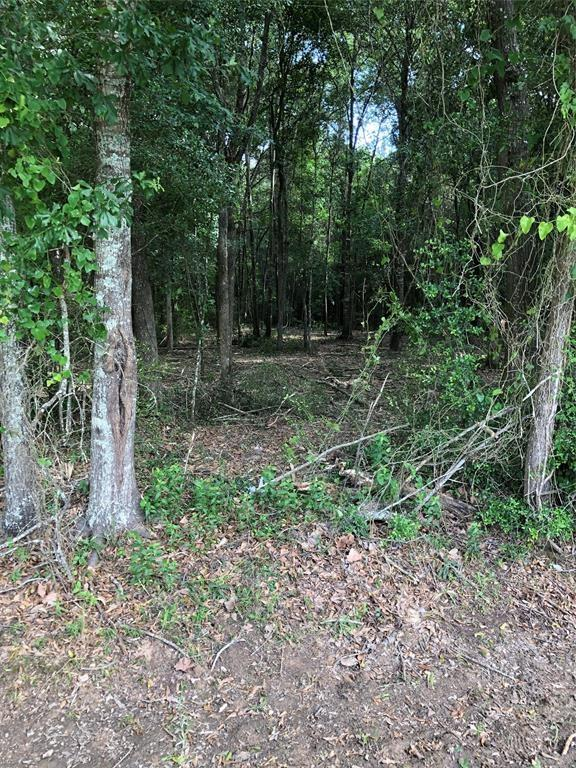 Located minutes from downtown Cleveland and just a few blocks north of Hwy 105, these wooded lots are the perfect place to build your dream home, or have your manufactured home placed on. Several lots to choose from between 1.35ac-2.4ac.  Public water and Electricity are accessible to all lots.