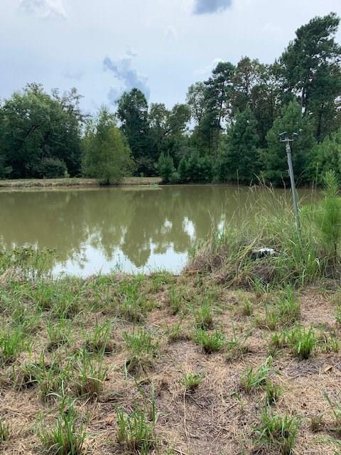 Come to the country and build your dream home on 16.42 acres of unimproved beautiful and quiet land. The 16.42 acres has many trees and 2 ponds.  Plenty of room to fish and hunt.  Also included is one lot that is in Hidden Coves subdivision.  Enjoy all the amenities of the one lot in the waterfront community,  such as swimming pool and boat ramp launch area.  Access to Lake Livingston and outdoor adventures makes this a unique property.