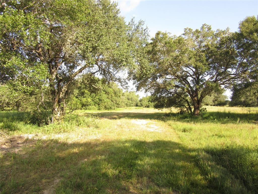 Great property for hunting or making it a high fenced ranch and build that new home or hunting operation in Colorado County.   Just minutes from Columbus or west of Eagle Lake this property has many live oaks and scrub oaks in clusters will make that great ranch for cattle or for that hunting operation. Property has one water well and electricity.   Electricity on front end off Hwy. 90 and to the water well and electric thru the property to the back side.   Has large property owners and rice fields to the east and old gravel pits that are 30 years old to the south.  Heavy treed area with large live oaks and other hardwoods that cover about 15-25 acres and large trees through out the property with good spacing of trees to the open pastures.  The percentage is about 50/50 on trees and open pasture. Has many deer and hogs on property. Great grasses and many mesquite and huisache removed. Come see this great property in Colorado County.