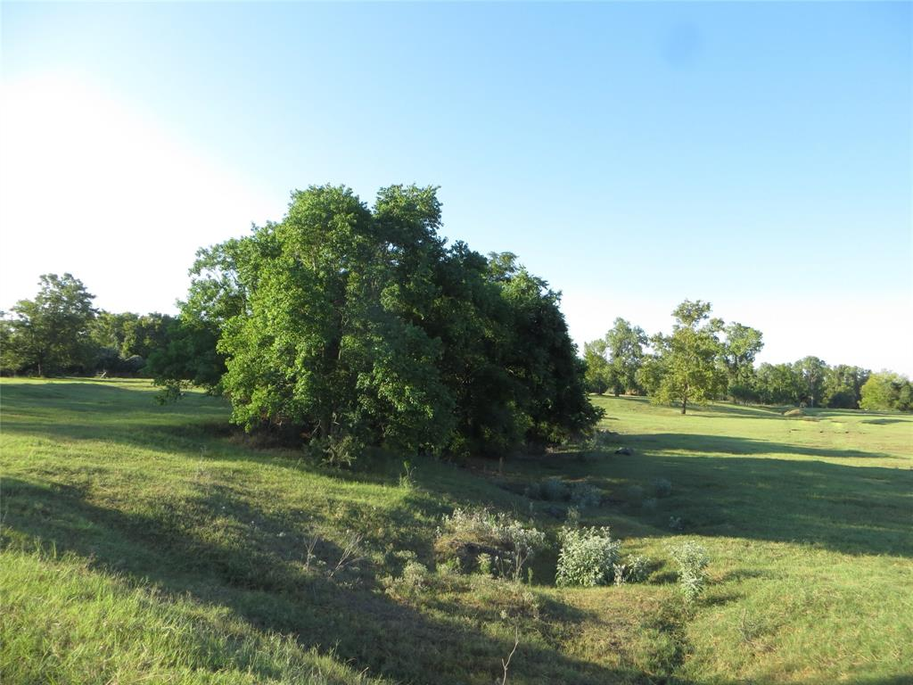 This 31-acre parcel is situated just outside of Columbus on Business Highway 71. It is less than a mile from Highway 71 proper, providing endless possibilities. It is currently used for cattle grazing but does have a prepared home pad and a raised driveway entrance leading to the Home pad that is not in the floodplain. The owner has two elevation certificates available upon request. The parcel has a 50' x 70' metal building that did take on water during hurricane Harvey. The garage side is very much usable space, but the living quarters have been left gutted. The improvements still have a functioning services which include water well and septic. The land has several nice large trees and plenty of elevation changes. This property is loaded with wildlife and would be a great little hunting parcel. It would also make a fantastic place for motocross, or an RV Park, the possibilities are endless.