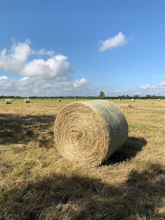 "50 acres of unrestricted/unimproved land with a small pond ready for development. Completely fenced property with freshly planted trees throughout. The property's current use is for growing and harvesting hay. Become a ""Do-IT-Yourself Hay"