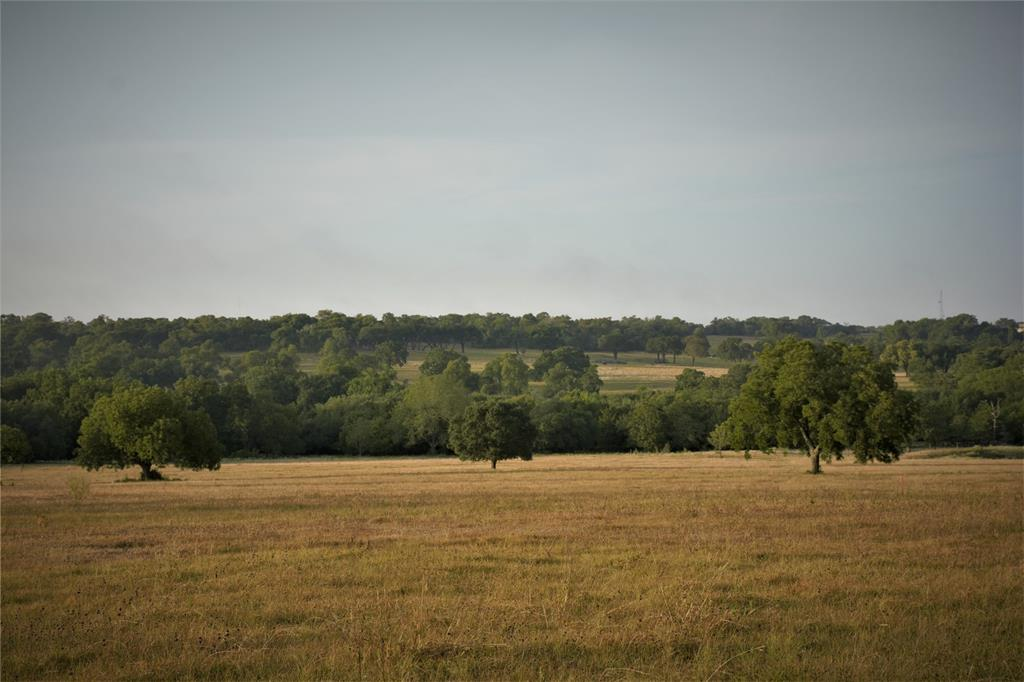 SUMMIT HILL.  Build your country dream home here.  Highest elevations in Washington County make the views breathtaking!!  Nice mix of pastures and woods, partially fenced and cross fenced, ag exempt, creek (Four Mile Creek originates here).  Note: there is a view of the pond but pond is not on this tract.  Located approximately 90 minutes from either Houston or Austin and just outside city limits of Historic Burton with the added bonus of being only approximately 15 minutes from Round Top.    Per seller: includes a 500+/- depth well, 185GPM, pulls out of same aquifer as City of Burton.