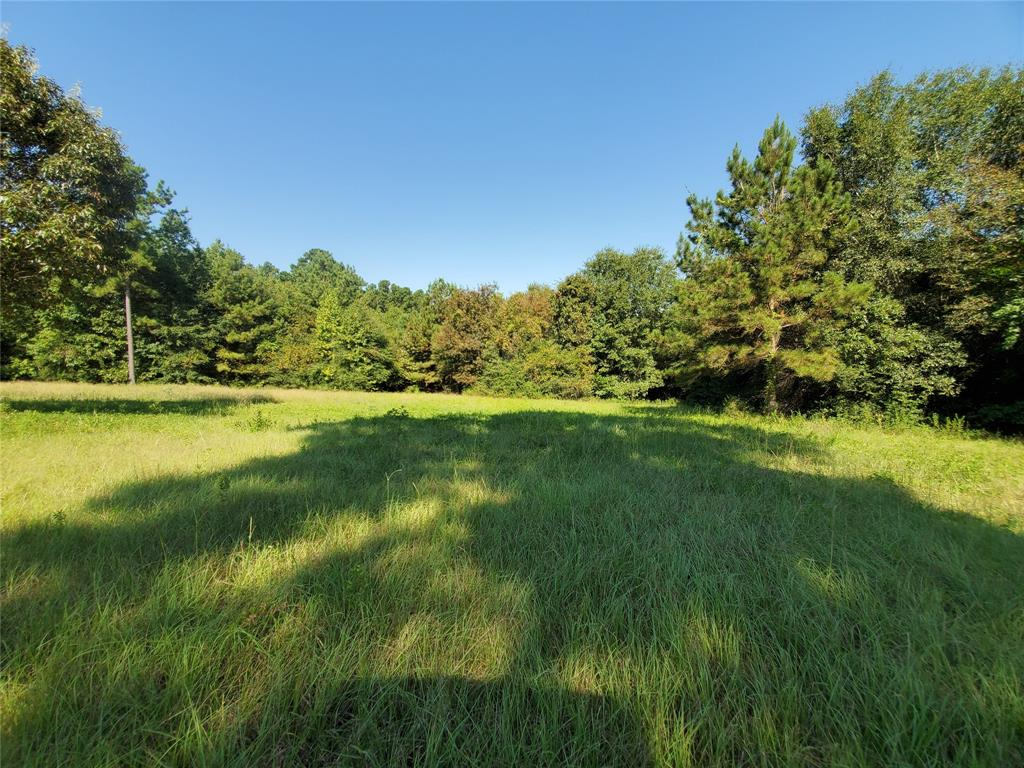 Just over 16 and 3/4 acres of beautiful wooded land ready for you to build your home-site or to use at your leisure. This unique property has a spring-fed creek that starts from the left side of the property and runs into a deep gully going across the middle of the property. The landscape starts out high and dry by the county maintained road, goes downward from there into the gully and back up high and dry on the back portion. This acreage backs up to a high fenced property. The front portion has a grassy area that would be perfect for a home-site. Deer and hog frequent this property. In fact, on the listing preview, a small herd of hogs were sighted. This property can be divided into 2 sections of 10 acres and the remaining 6+ as long as it's divided in such a way that neither can be landlocked. Anyone wishing to view this property must be accompanied by a licensed agent. Don't miss this opportunity!!