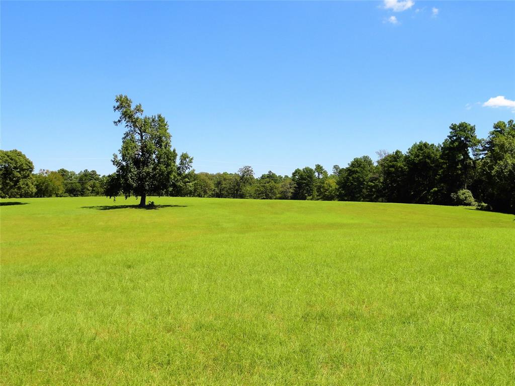 The Luker Ranch totals 130.637 acres of beautiful rolling terrain. This ranch is located just east of the town of Centerville at the very end of county road 227. 75% of the ranch is made up of mature virgin hardwood & pine timber. The remaining 25% is in bahia & coastal grasses that is currently being baled for hay. At the front of the property on top of the hill you will find a 2 bedroom, 1 bath farmhouse (Approx 800 sq. ft.) a 25x35 metal dirt floor barn with a workshop and a set of working pens. Property is fenced and cross fenced with 2 stock ponds located on the opposite ends of the property. This ranch is set up perfect for the new owner to run cattle, fish, hunt whitetail deer/hogs and enjoy the great outdoors.