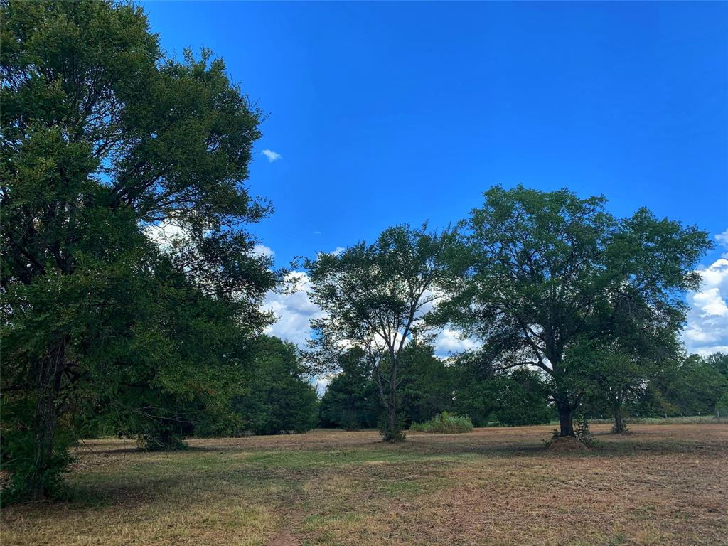 What a great location! 14.26 acres of pasture land with scattered hardwood trees located in Leona on FM 977 and CR 416. Entire perimeter is fenced and there is one cross fence dividing into two pastures. There is electricity and water on the property now. This would be a great place to build a home. Short drive into Centerville for CISD schools. Be in The Woodlands in an hour! Contact me with any questions or for more information.