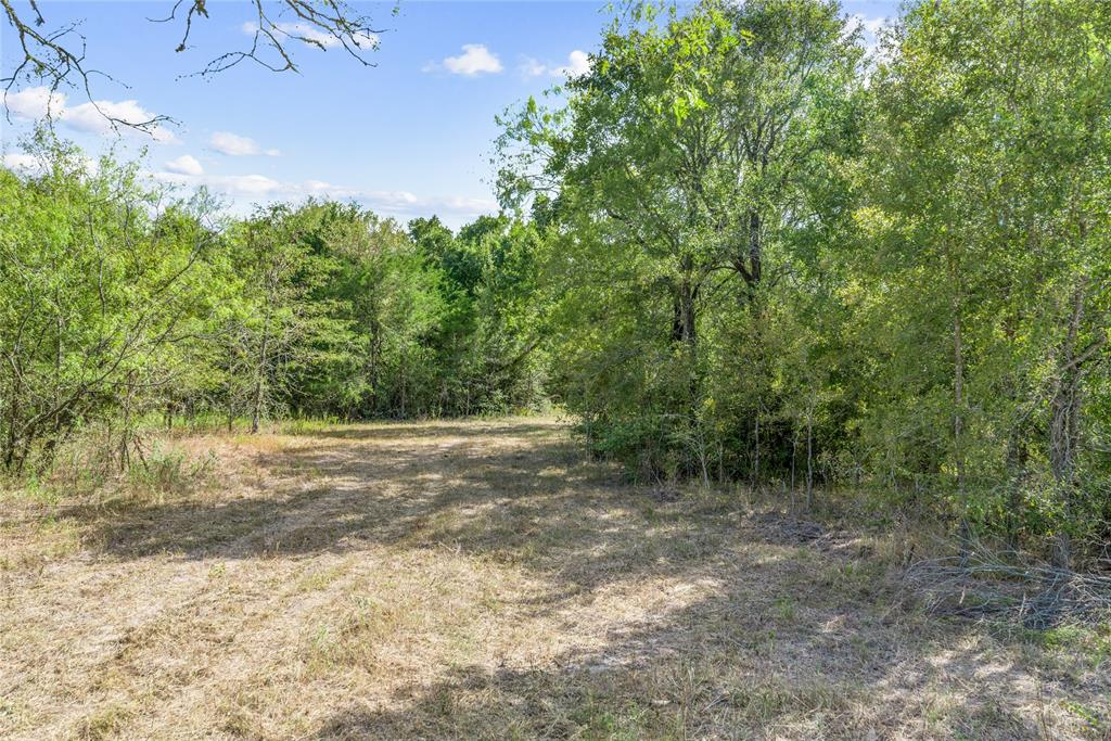 Fantastic opportunity for a new home project, located on 8.2 Acres in Madisonville TX. This gorgeous property features a heavily wooded terrain that can be utilized as either a new home site, or a hunters getaway during deer season.  Nestled down a country road, you won't have to worry about traffic noise or other urban distractions, enabling you to live your lifestyle. Only 12 minutes to Madisonville and 35 minutes to College Station, MCISD school district.