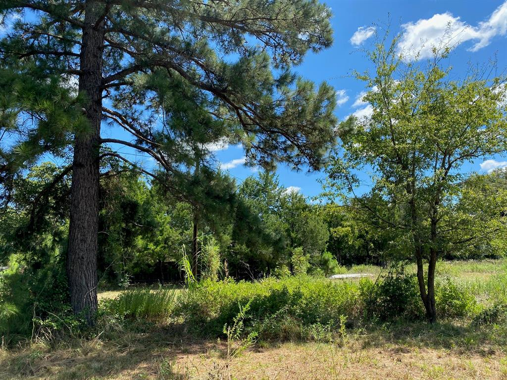 7.03 acres on the edge of town.  With frontage on CR 318, this property is in a prime location.  The property is mostly wooded with a small opening at the front. There is an old mobile home on the property that will be included in the sale.