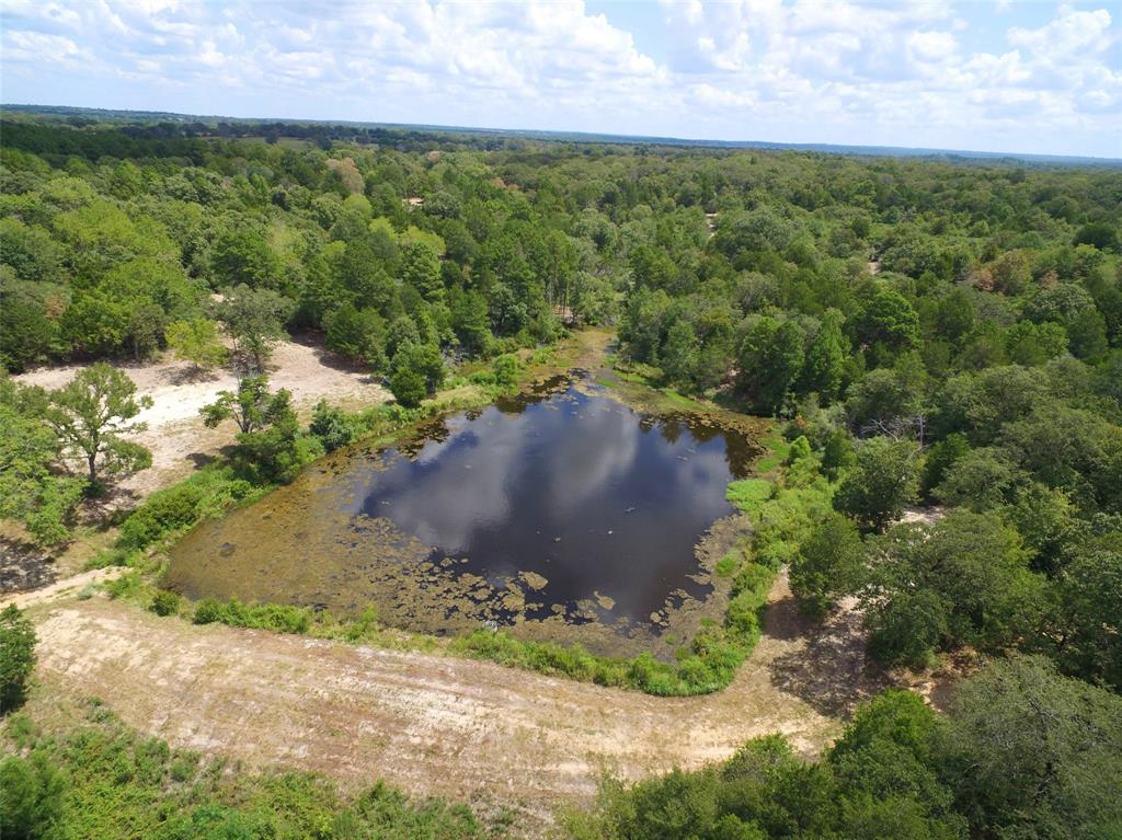 79.74 acres north of Centerville.  Excellent location between Hwy 75 and I-45.  Great interior road system allows for easy travel through the entire property.  The centerpiece of the property is the 2-acre spring fed lake.  The lake has great elevation on both sides creating a number of excellent homesites.  The spring that feeds the lake is a strong spring that keeps the lake at a constant level.  There is an abundance of game animals on the property and the lake is full of large mouth bass.  This is a great opportunity to own a choice piece of real estate in Leon County.