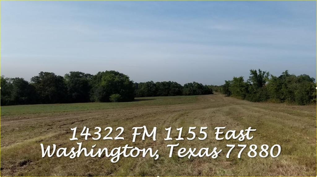 At just over 122 acres, this is the perfect setting for a combination of hay pasture, grazing, and wooded property. Also perfect for a custom home with rolling acreage, pond, a tree-lined ravine, and seasonal creek. Deer, hogs, and other wildlife can be seen roaming across the property. Sub-dividers also welcome. Electrical and water available, no restrictions. Ag exemption in place. Well located with easy access to Brenham and Houston.