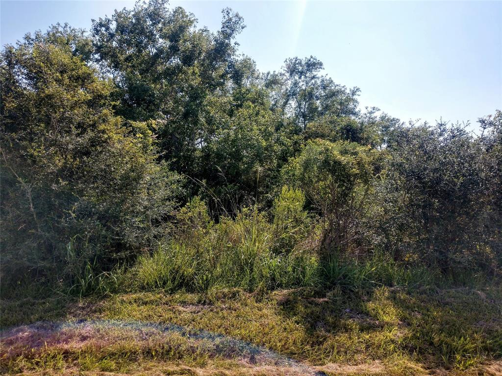 Here's the unicorn you've been looking for! Approximately 2.58 acres in Chambers County with approximately 232 feet of Road Frontage.  Property is brushed on the front and opens to clearing in the middle of the property.  Has light restrictions that include No Mobile Homes.  Convenient to I-10 East yet far from the hustle and bustle of city life. Strategically located between Houston and Beaumont and driving distance to Trinity Bay and Galveston.