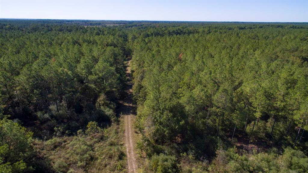 A great opportunity for raw land acquisition. Within 1 hour of north Houston, TX on low traffic FM road/County roads. Upland terrain and wooded in production pine with hardwoods mixed in the creek drains. Good access/frontage with internal woods roads. A total 2,375 acres or opportunities for divisions per the maps herein. Begin your ADVENTURE! Excellent candidate for high fence ranch! Minimal floodplain on the upland breaks of the Trinity River. Market supported pricing. Electricity along FM 230 or by extension from Bo Brown Rd. Water along FM 230 (availability subject to confirmation). *Property is divided by the Houston/Walker County Line, therefore, property falls in Lovelady and Trinity ISD.