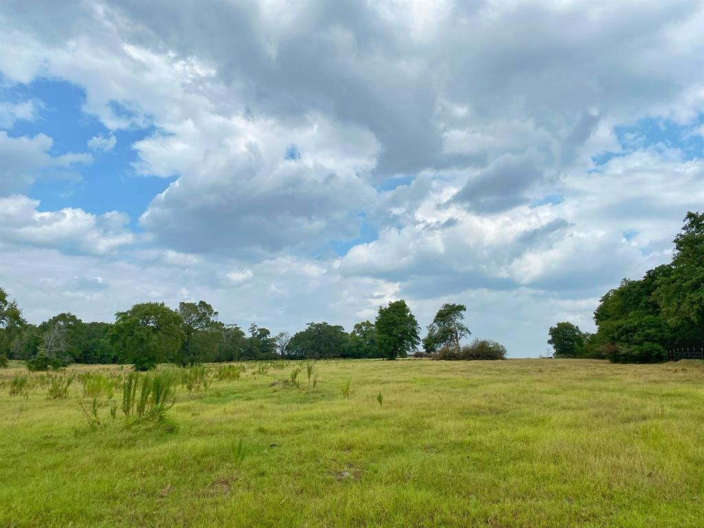 26.2 acres west of Centerville with Highway 7 frontage.  The property is mostly pasture with a nice hill that would make a great home site.  There is a small pond that is perfect for livestock and wildlife.  Excellent location only 4 miles from town.  Utilities are available at the road.