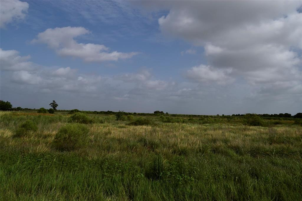 Blank slate to own your own mini ranch.  Almost 30 acres to do what you please.  Area near STP and Tin Top.  Has deer and hogs roaming through. Great place to get away with the family and make memories. 1 1/2 hours from Houston and 30 minutes from multiple fishing sites.  Come see the terrain and what this has to offer.