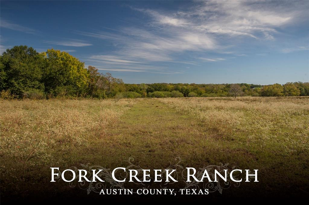 Approx. 233+ acres offering high, rolling hills with scenic and private views, wooded and open areas, four ponds and two forks of Caney Creek meander through the property creating a thriving habitat for wildlife. Offers several great building sites and the potential for large lake site. The property is located between Brenham and Bellville in the small community of Kenney, Texas on paved road frontage with two entrances.  This is a great property for cattle, horses and hunting/recreation.