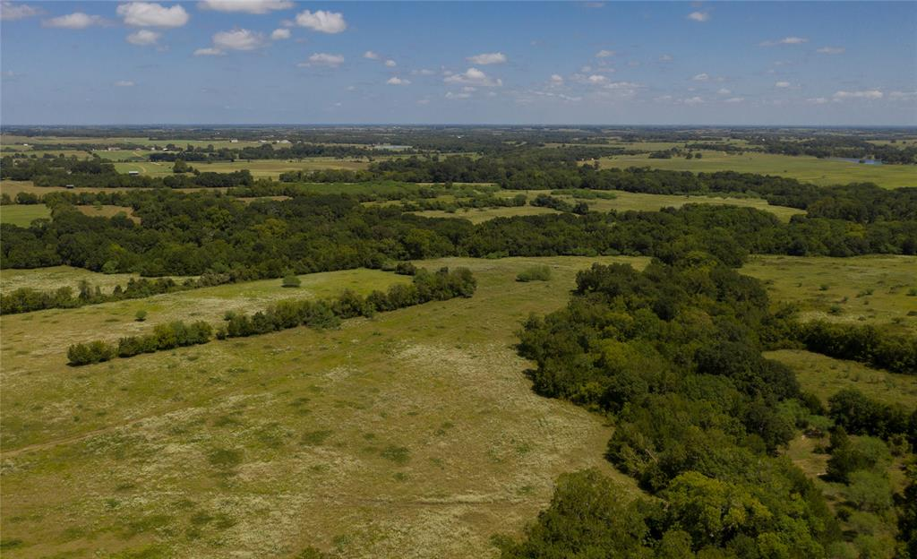 Approx. 180+ acres offering high, rolling hills with scenic and private views, wooded and open areas, pond and two forks of Caney Creek meander through the property creating a thriving habitat for wildlife. Offers several great building sites and the potential for large lake site. The property is located between Brenham and Bellville in the small community of Kenney, Texas on paved road frontage.  This is a great property for cattle, horses and hunting/recreation.
