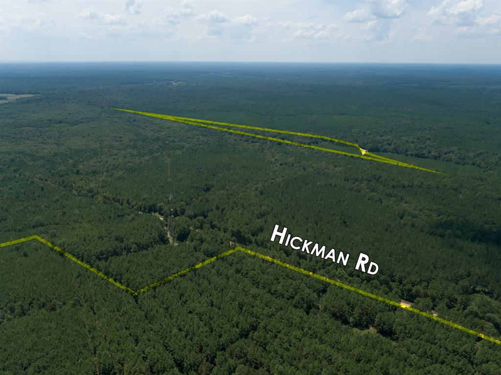 Tract 17;1st time open market offering for this historically managed timberland property(ies).