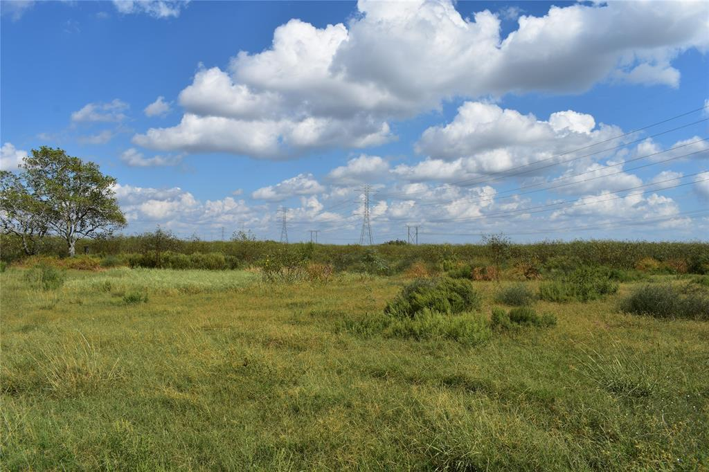 Rectangular shaped tract, accessed by easement, for home, mobiles OK, farm or pasture. About an hour from Sugar Land