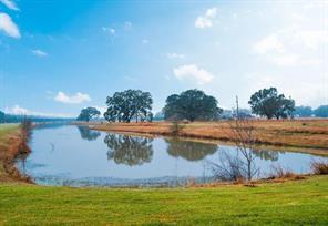 1614 Lakeland Circle, Rosharon, TX 77583