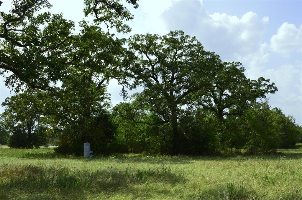 20 acres being split out of 50 acres fronting Hwy 90 N.  featuring large towing mixture of mature hardwoods with heavy wooded areas making this property a hunters dream.  Easy access to College Station, Huntsville, Conroe, 1.5 from Houston.  Locate in sought out Anderson ISD.  Electric & a water well inplace, the entrance has a culvert w/caliche drive! Property is fully fenced and cross-fenced.  Minimal covenants to include no pig/chicken farms for clean country living.  There are overhead electrical line running through the property. Must see to appreciate the beauty of this tract of land.  Property is being offered for sale as whole 50 a Ac for $475,000 or willing to split property into two tracts. 20 Ac for $199,000 or 30 Ac for $299,000. MLS # 92056371
