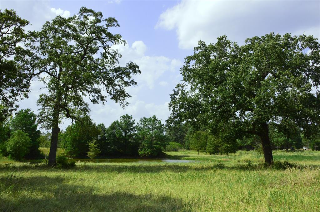 30 acres being split out of 50 acres fronting Hwy 90 N. featuring large towing mixture of mature hardwoods, two ponds, with heavy wooded areas making this property a hunters dream.  Easy access to College Station, Huntsville, Conroe, 1.5 from Houston.  Locate in sought out Anderson ISD.  Property is partial fenced and cross-fenced.  Minimal covenants to include no pig/chicken farms for clean country living.  There are overhead electrical line running through the property. Must see to appreciate the beauty of this tract of land.  Property is being offered for sale as whole 50 a Ac for $475,000 or willing to split property into two tracts. 20 Ac for $199,000 or 30 Ac for $299,000. Electric & a water well is available on the 20 ac tract or entire tract, the entrance is also located on the 20 ac partial that has a culvert w/caliche drive!  MLS 1948593