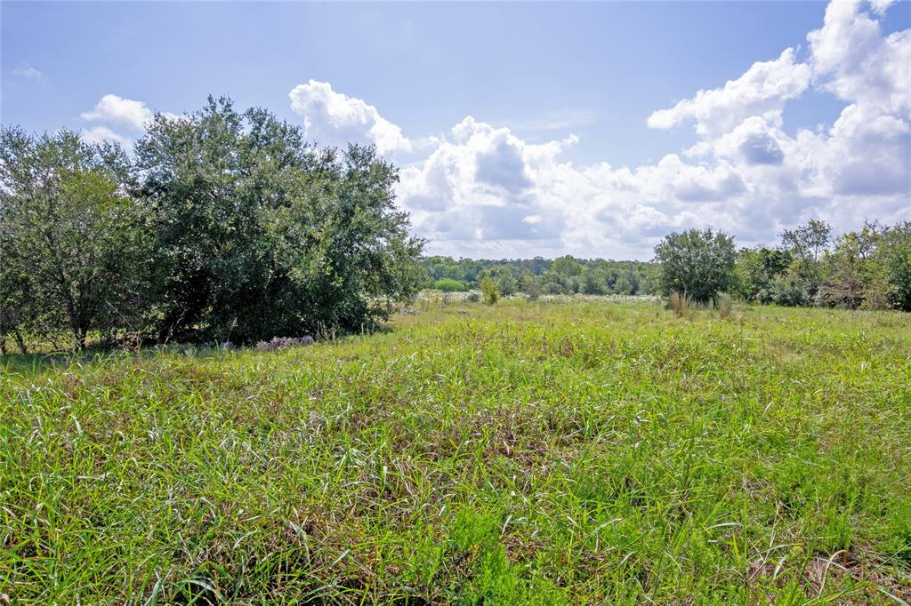 Approx. ±28 acres being subdivided out of ±52.328 acres.  A very nice private tract with a good blend of wooded area and pasture off of Palestine Rd. 0.8 miles from FM 390, 12 miles from Brenham, 35 miles from College Station, and 72 miles from Houston. Property is waiting for your dream home or Barndominium.  Lightly restricted. Ag exemption in place.