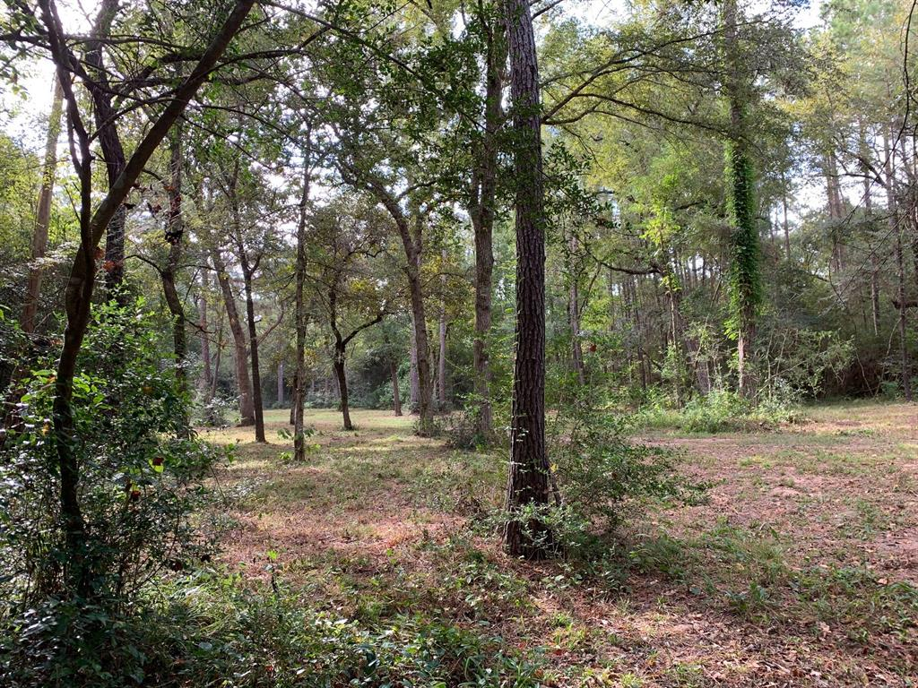 Rare opportunity to own over 10 gorgeous acres in Magnolia of native woods with towering pines, stately oaks and wildlife. The location is isolated and quiet yet only 4 miles from Aggie Expressway, 6 miles from downtown Tomball, 10 miles to 99/Grand Pkwy and 14 miles to the Woodlands. Not in a flood plain. Surrounded by other large wooded tracts. Light restrictions that enhance property value and retain natural beauty. There is a path through the property that can be driven for viewing. Clearings already under-brushed and open for beautiful and romantic home site where you can relax and live surrounded by nature. Sandy loam soil type. Currently part of a larger property with a Timber/Wilderness Appraisal. Electricity connection available through Centerpoint and your choice of provider. Water connection available with Aqua Texas or drill your own well. Internet through AT&T.