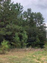 23511 Saratoga Woods, Montgomery, TX, 77316