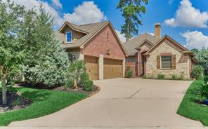 10 Danby Place, The Woodlands, TX 77375