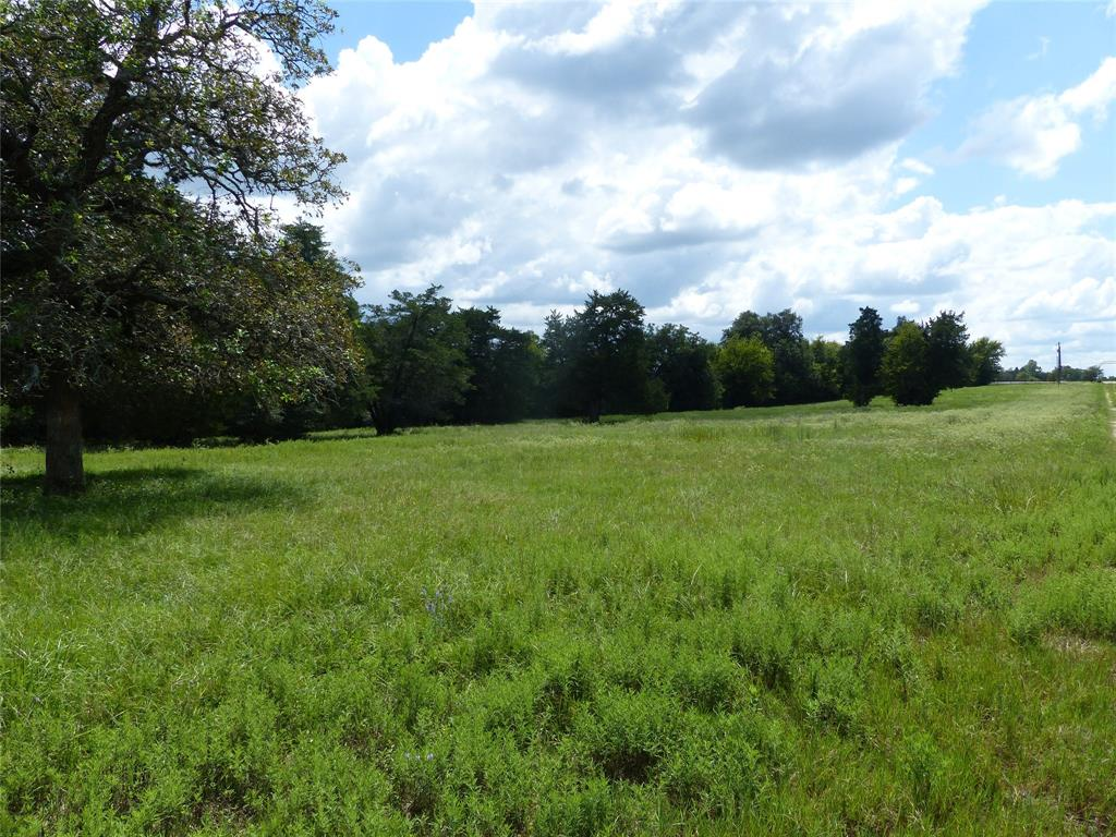 This a beautiful 39.9175 acre tract with large trees and abundant wildlife only 6 miles from Bellville.   There is an adjoining 40.8975 tract available, MLS# 20622347.