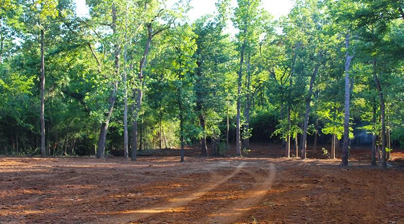 5 acres of wooded property in Leon County.  County Road frontage with water and electric available at the road.  Centerville ISD.  Call today for appointment