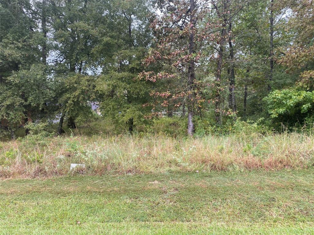 00 Willow Oak Ln, Point Blank, Texas 77364, ,Lots,For Sale,Willow Oak Ln,26103036