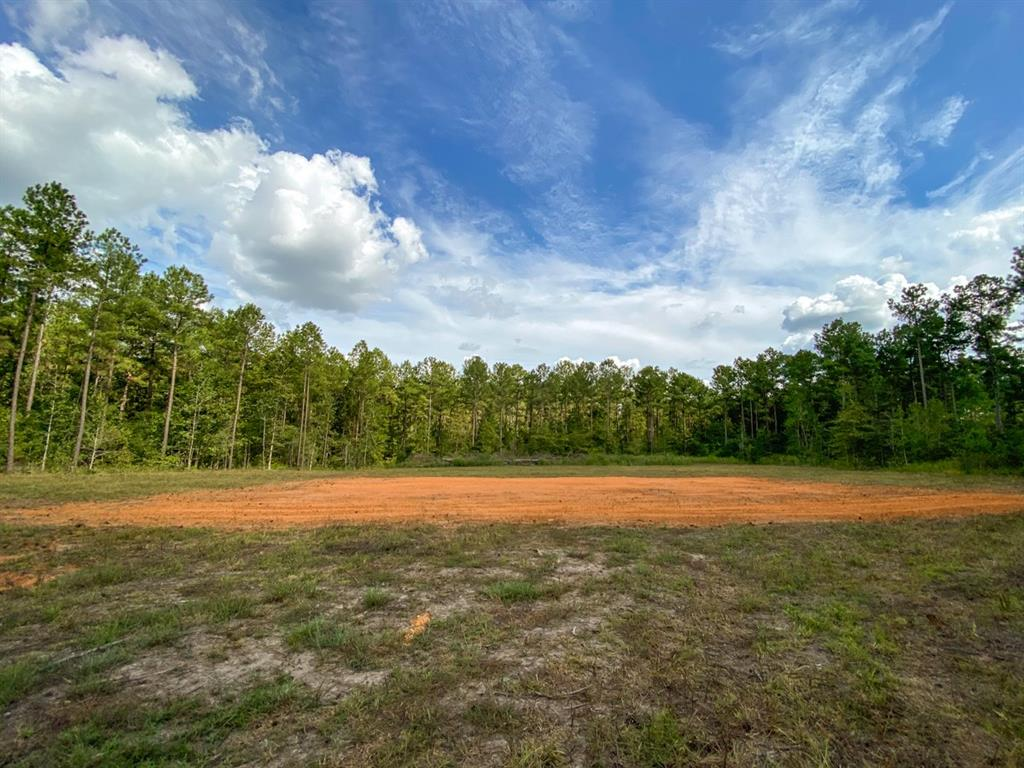 Southern Star is a planned community developed with your country lifestyle in mind. Beautiful area with tall, mature pine trees and mixed-in hardwoods. Recently, the seller established a water meter on the property and improved a building site. Electricity is available at the road. This tract is set up and ready to build on! Great neighboring properties and low taxes! Don't hesitate to reach out with any questions!