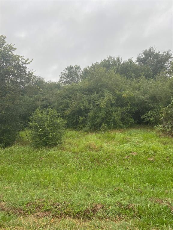 LOW TAXES. COUNTRY LIVING. 3 ACRES in the community of Wallis near Katy and Fuhlshear. Welcome Home!