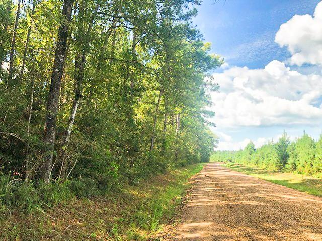 1st time open market offering! Rural yet easily accessible near FM 943 fronting Menard Chapel Rd. (a county maintained paved and rock/gravel road). Wooded in pine plantation and big hardwoods. Low traffic road. Easy window to US 59 and the Houston metroplex/airport. Escape the city. Life's too short!  