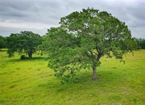265 Boulton Creek Rd, Muldoon, TX 78949