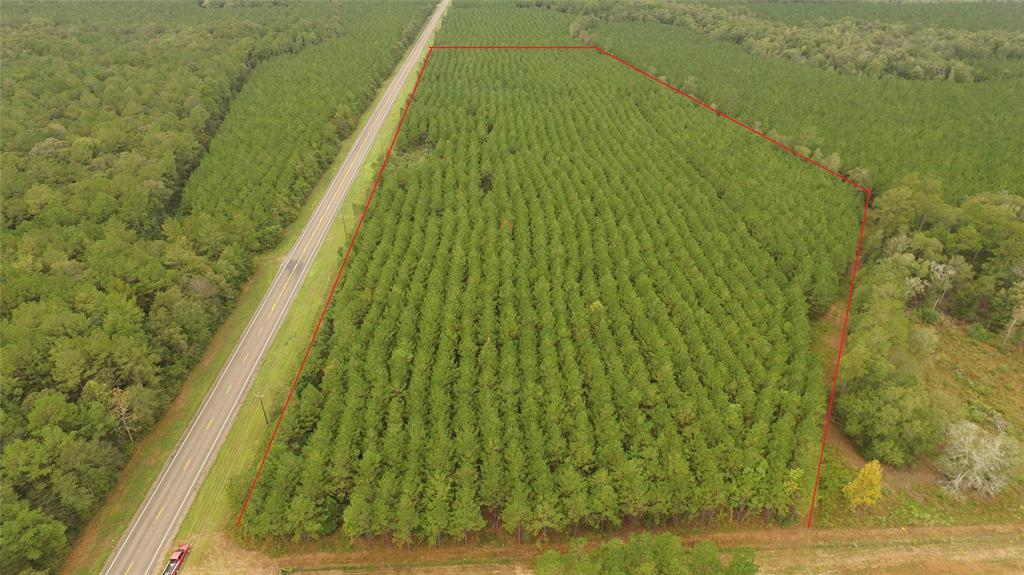 Great 20 acre parcel with approximately 1400' of Frontage on FM 943.  Currently timber ag exempt.  Property is fairly level and not in the flood plain according to FEMAs flood plain maps. Could be a great home site where you can get that seclude feel surrounded by forest or you can just wait for the pines to mature and sell timber. Electricity is available along FM 943. A well would be required for water.  Great Access via State maintained highways.  Check out the aerial video.