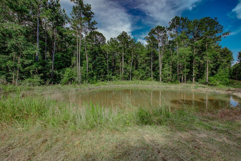 Looking for a piece of land to build your dream home?  Look no further - this lot is AMAZING!  Privacy galore, wooded AND a pond!  Or.... add this to the property next door on lot 11 @ 5161 Deep Forest Trail (MLS #  89765197) for your own sanctuary on nearly 23 acres!  (Package pricing available).  Either way, you can't go wrong in Caney Creek Crossing!  Start planning your dream home today!
