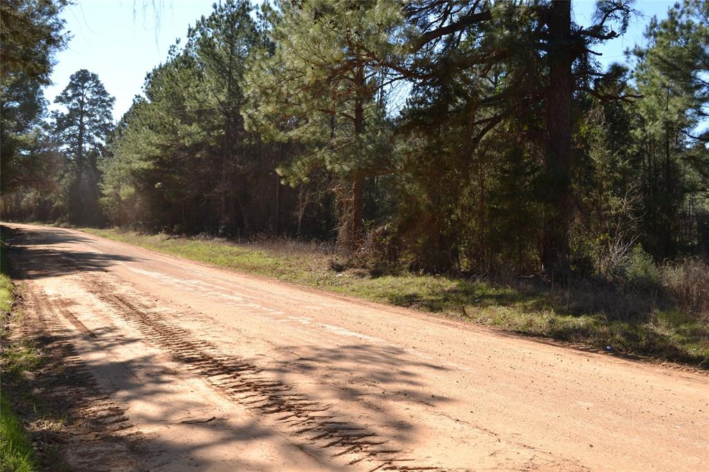 WOODED TRACT!   Come see this nice wooded tract less than one mile off State Highway 21 East in the Weches community. This 8.54-acre tract would be a good building site with electricity and water available at the road. Call us today to schedule a private showing.