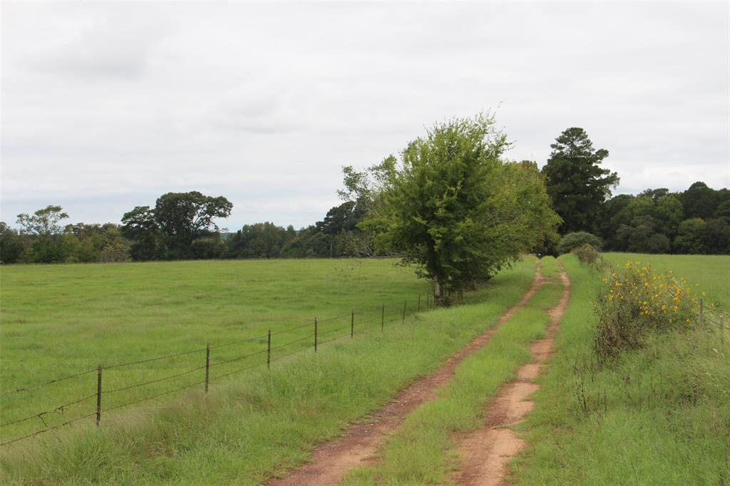 Wide open spaces and room to move..no rubbing Elbows here. Get away from it all and everyone. Rolling Terran, stocked ponds, abundant wildlife, mature towering trees. Numerous home sites, that will keep you high and dry. Come own your little slice of Heaven here in East Texas. Totally Unrestricted. Fenced & Cross fenced.